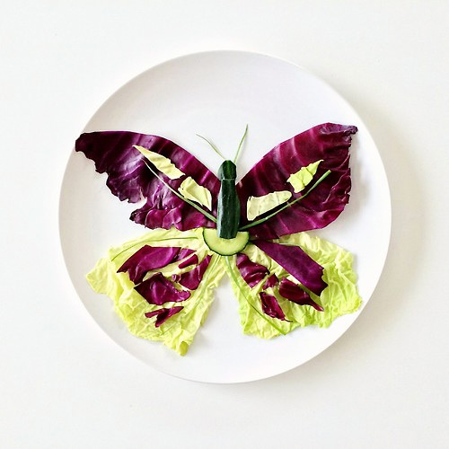 papillon Culinary Canvas Lauren Purnell featured