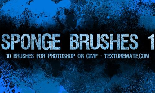 Free sponge brush