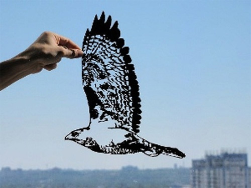 hawk in flight dream paper cut Dmytro Iuliia featured