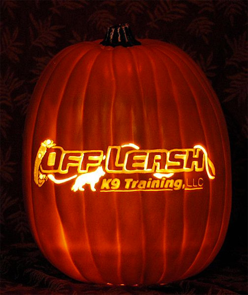 off leash pumpkin carving