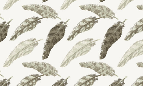 different feather patterns