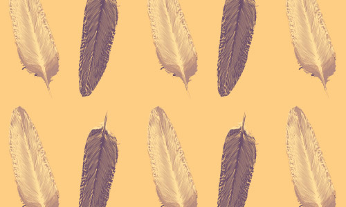 nice free feather patterns