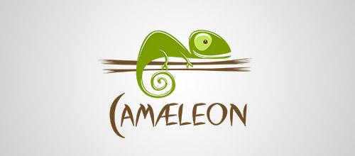 camaleon sequoya logo design