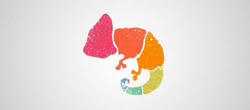 colorful chameleon logo design