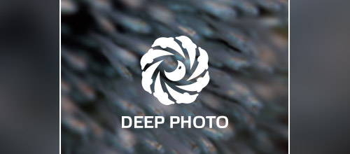 deep photo dolphin logo design