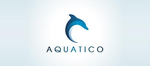 aquatico dolphin logo design
