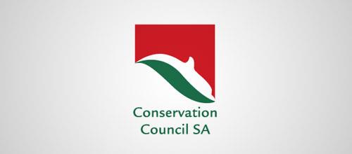 CCSA dolphin logo design