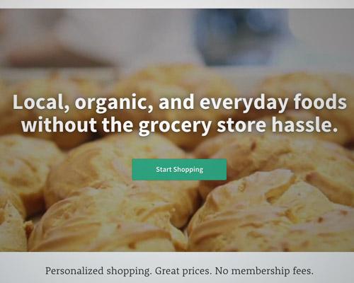 food web designs