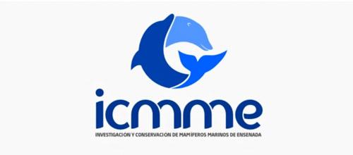 icmme dolphin logo design