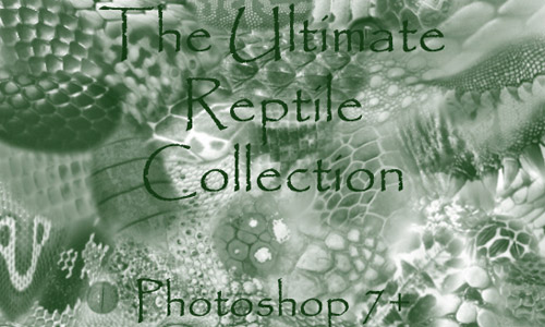 free reptile scales brushes