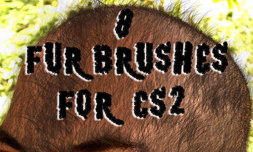 krissi fur brush