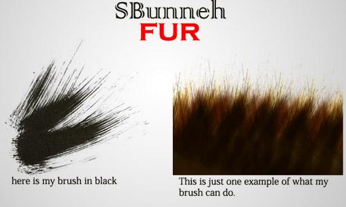 Dog Hair Paint Brush
