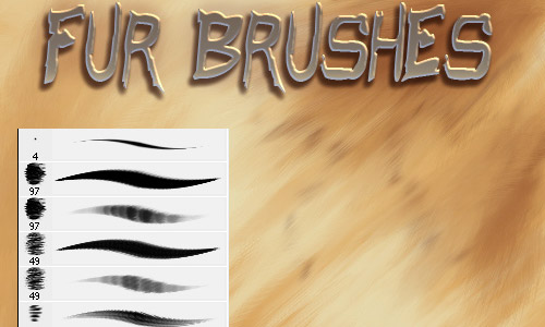 fur brushes free