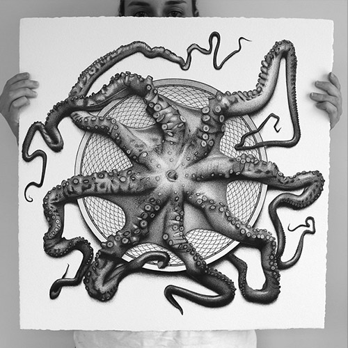 octopus illustration hendry
