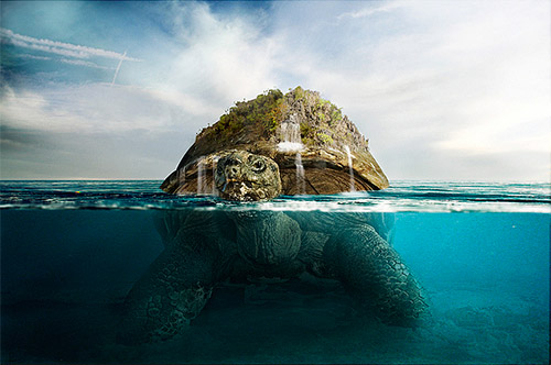 underwater turtle photoshop tutorial