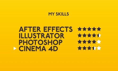 portfolio infographics elements
