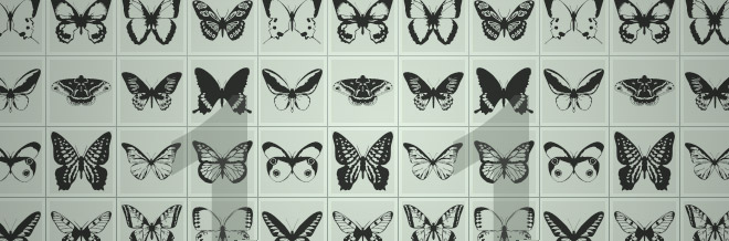 Handy Sets of Free Butterfly Custom Shapes for Photoshop