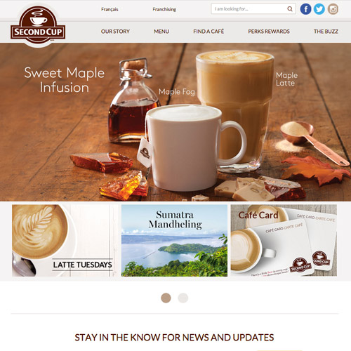 cup coffee web design