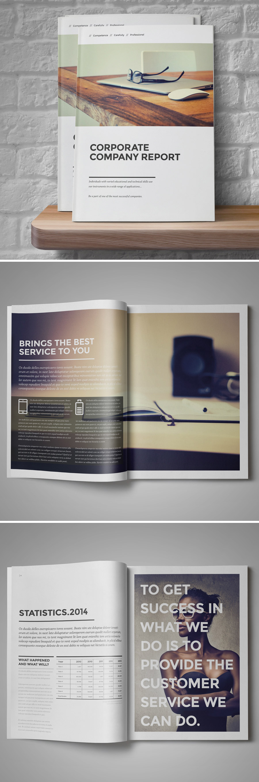 corporate annual report brochure