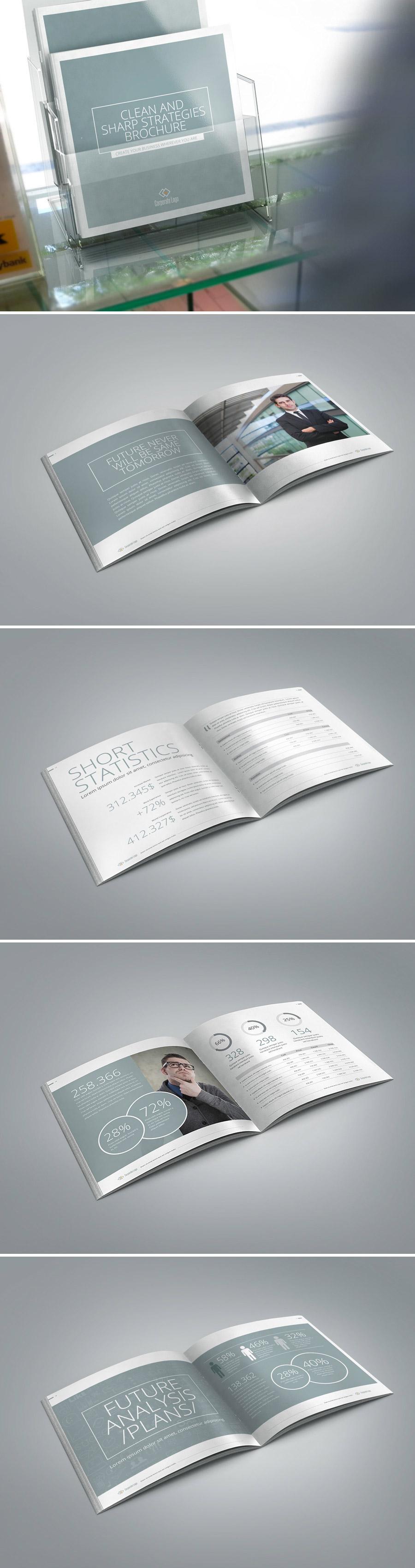 sharp clean brochure report