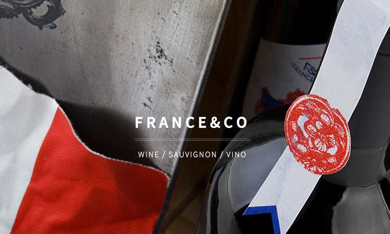 france vineyards website