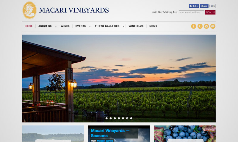 vineyard website design