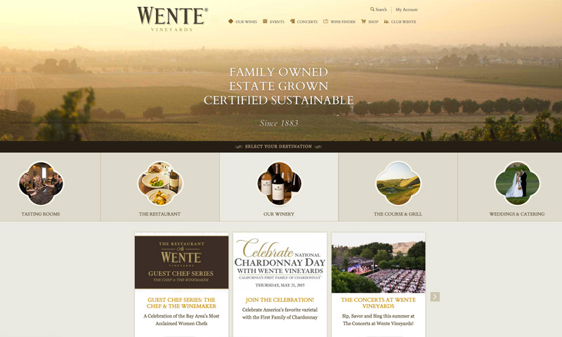 vineyard web design