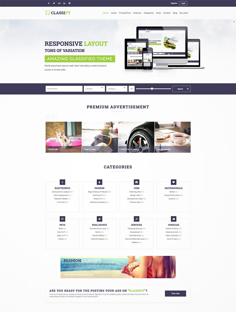 classified ads theme