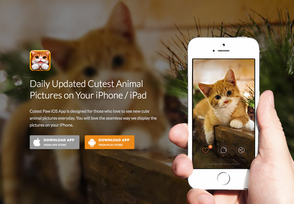 animal photo app