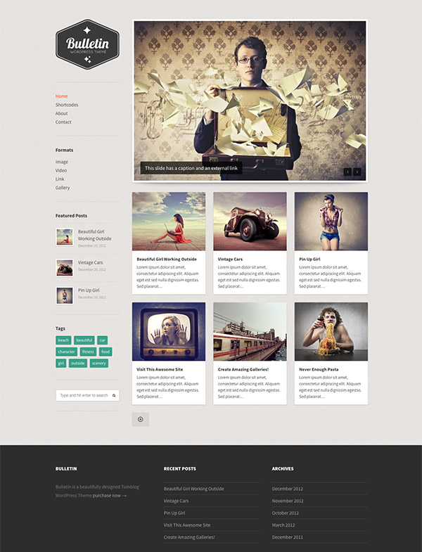 tumblog premium wordpress