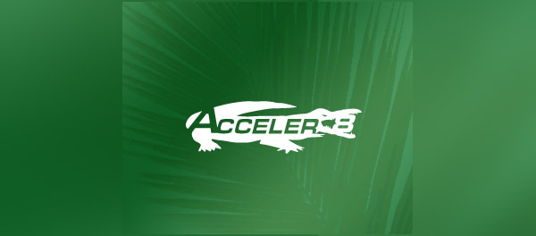 crocodile alligator logo