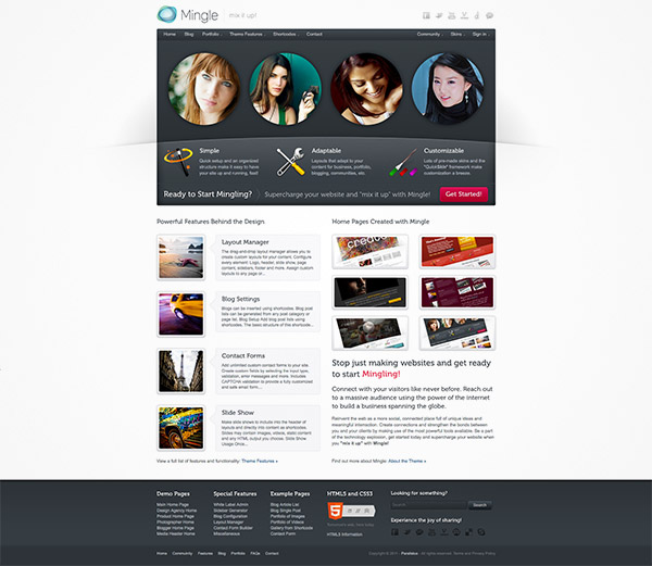 buddypress theme website