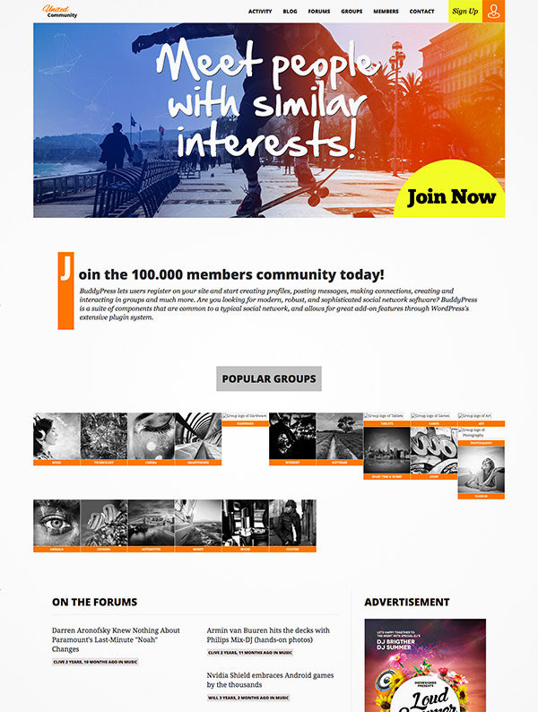 buddypress theme community