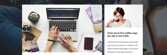 20 Best Free and Premium Tumblog WordPress Themes