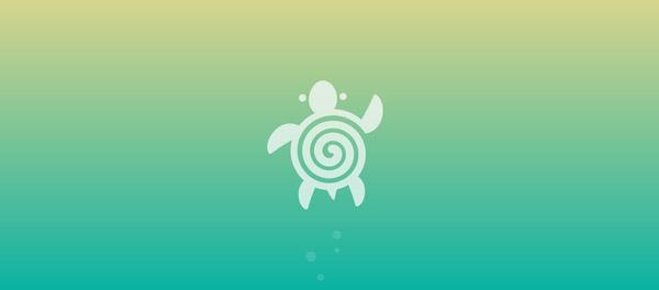 turtle spiral logo