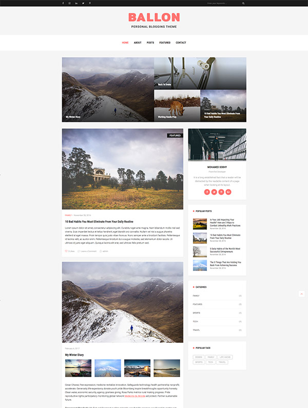 template wordpress website