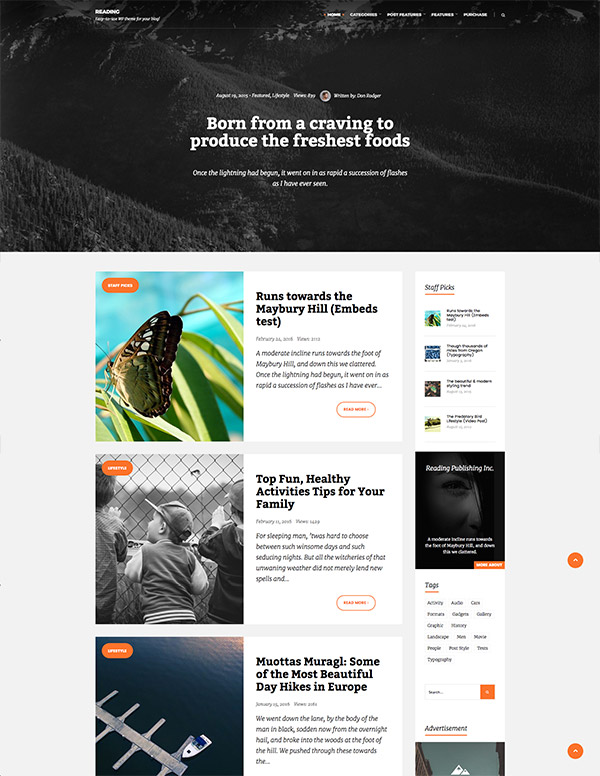 elegant website style