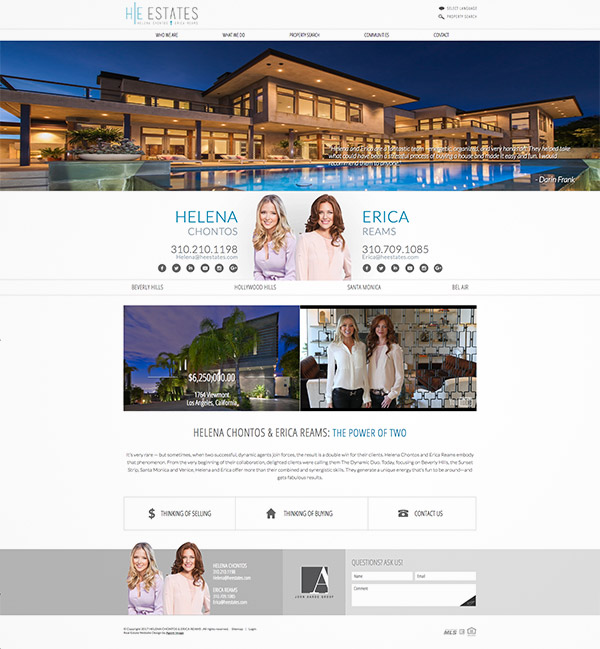professional design website